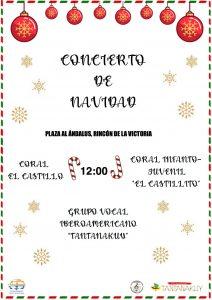 Concierto Navidad 27/12/2020 12:00h